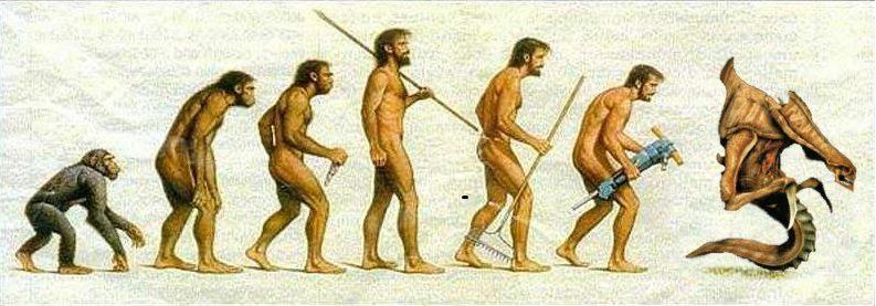 Korean Evolution